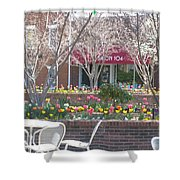 Downtown, Hendersonville, Nc Shower Curtain
