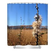 Downtown Meadow Architecture Shower Curtain