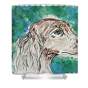 Doxie Blues Shower Curtain