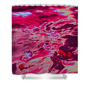 Dp Stone Impressions 11 Shower Curtain