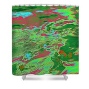 Dp Stone Impressions 13 Shower Curtain