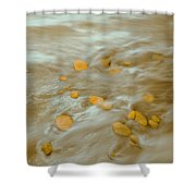 Dp Stone Impressions 15 Shower Curtain