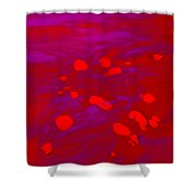 Dp Stone Impressions 16 Shower Curtain