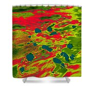 Dp Stone Impressions 22 Shower Curtain
