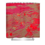 Dp Stone Impressions 26 Shower Curtain