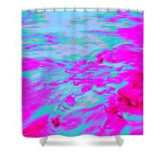 Dp Stone Impressions 3 Shower Curtain