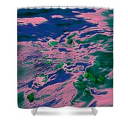 Dp Stone Impressions 9 Shower Curtain