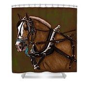 Draft Horse Shower Curtain