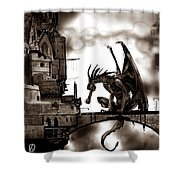 Dragon And Castle Shower Curtain