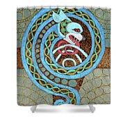 Dragon And The Circles Shower Curtain