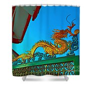 Dragon At The Gate Shower Curtain