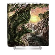 Dragon Branches Shower Curtain