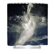 Dragon Cloud Shower Curtain