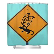 Dragon Crossing Shower Curtain