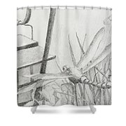 Dragon Fly And Lantern Shower Curtain