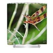 Dragon Fly Shower Curtain