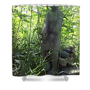 Dragon Fly Drummer Shower Curtain