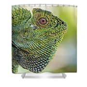 Dragon Forest Shower Curtain