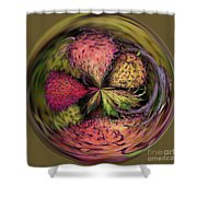 Dragon Fruit Shower Curtain