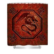 Dragon In An Octagon Frame With Chinese Dragon Characters Red Tint  Shower Curtain