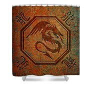 Dragon In An Octagon Frame With Chinese Dragon Characters Yellow Blue Tint  Shower Curtain