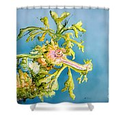 Dragon Of The Sea Shower Curtain by Tanya L Haynes - Printscapes
