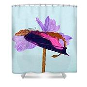 Dragon Sleeping Shower Curtain