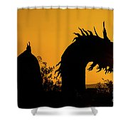 Dragon Sunrise 1 Shower Curtain