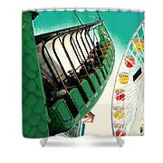 Dragon Swing Shower Curtain