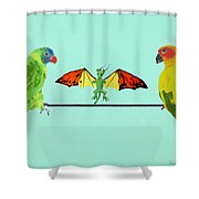Dragon With Birds Shower Curtain
