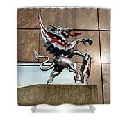 Dragon With Red Cross Shower Curtain