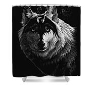 Dragon Wolf Shower Curtain by Stanley Morrison