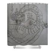 Dragonball Z Shower Curtain