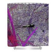 Dragonfly 2 Shower Curtain
