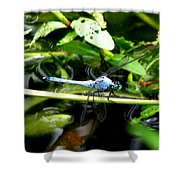 Dragonfly 9 Shower Curtain