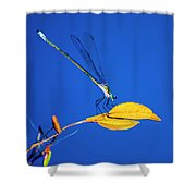 Dragonfly And Leaf Shower Curtain