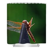 Dragonfly Cling Shower Curtain