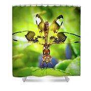 Dragonfly Design Shower Curtain