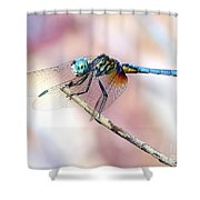 Dragonfly In Balance Shower Curtain