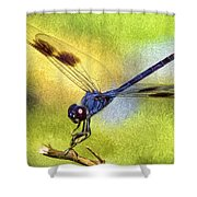 Dragonfly In Blue Shower Curtain