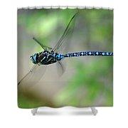 Dragonfly In Flight 2 Shower Curtain