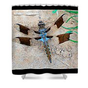 Dragonfly In The Sand Shower Curtain