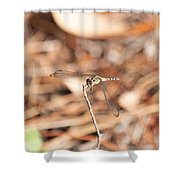 Dragonfly Karaoke Shower Curtain