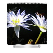 Dragonfly Lily Shower Curtain