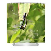 Dragonfly Love Shower Curtain