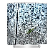 Dragonfly On A Bench Shower Curtain