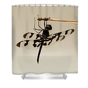 Dragonfly On A Pine Needle Shower Curtain