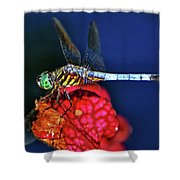 Dragonfly On A Pitcher Plant 009 Shower Curtain