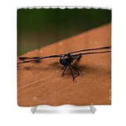 Dragonfly On A Porch Railing Shower Curtain