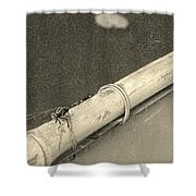 Dragonfly On Bamboo Oar Shower Curtain